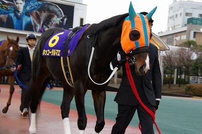 2014年度JRA賞発表、年度代表馬はジェンティルドンナ_b0015386_2153787.jpg