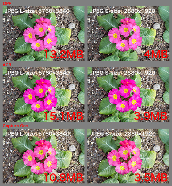 f0274403_229094.jpg