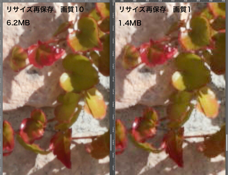 f0274403_2372093.jpg