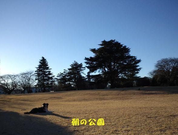d0224111_15004400.jpg