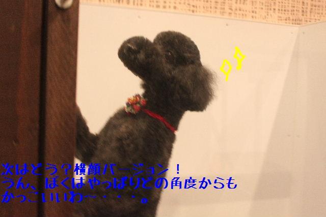 b0130018_14585273.jpg