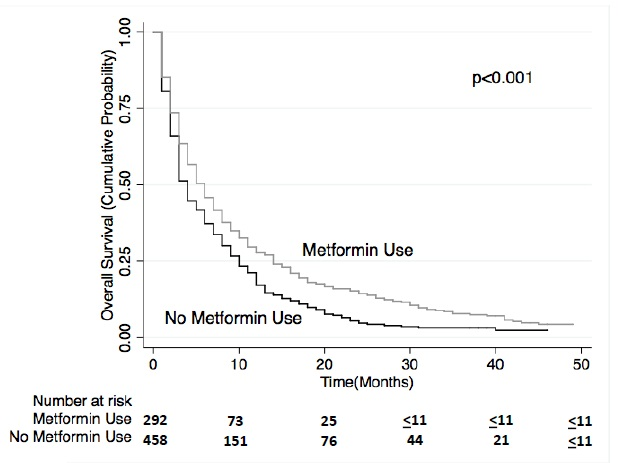 メトホルミンはIV期非小細胞肺癌において全生存期間を延長_e0156318_1225454.jpg