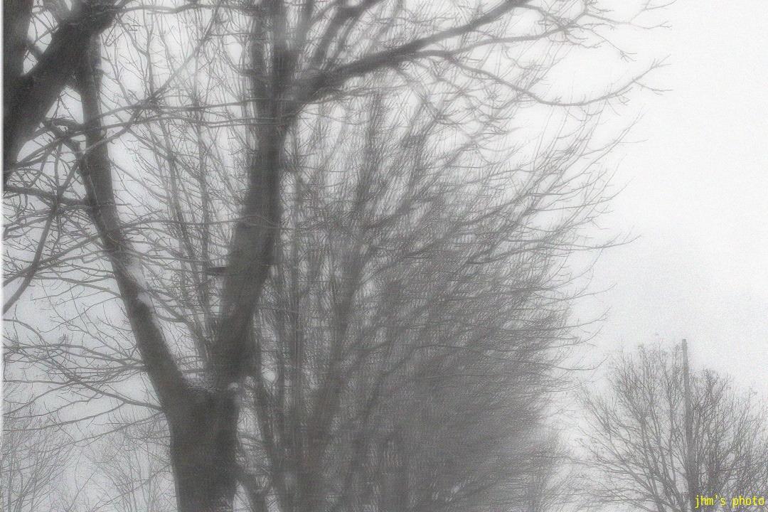 函館・ランダム冬景色_a0158797_0553474.jpg