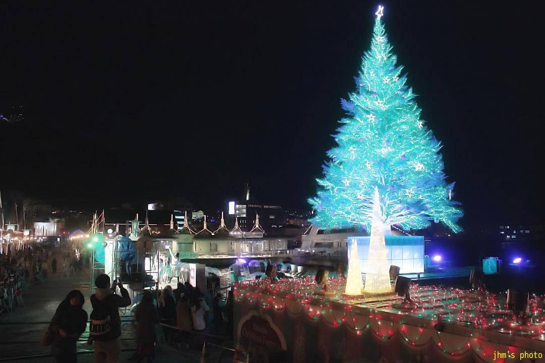 函館・ランダム冬景色_a0158797_0572864.jpg