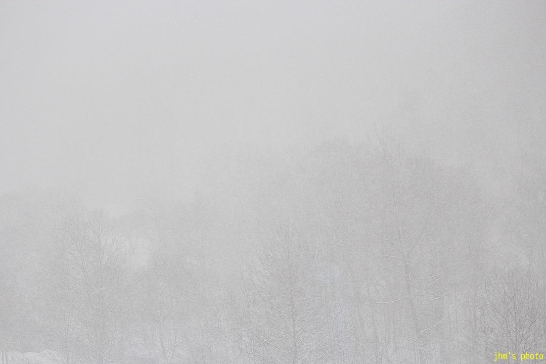 函館・ランダム冬景色_a0158797_0595289.jpg