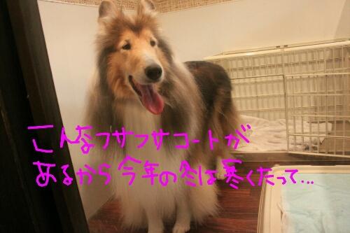 ツボ_b0130018_1526530.jpg