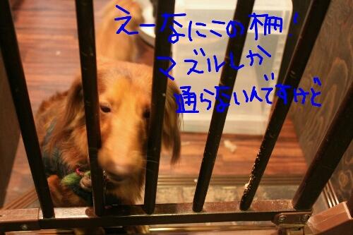 電子レンジ_b0130018_1823450.jpg