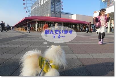 b0167519_2117661.jpg