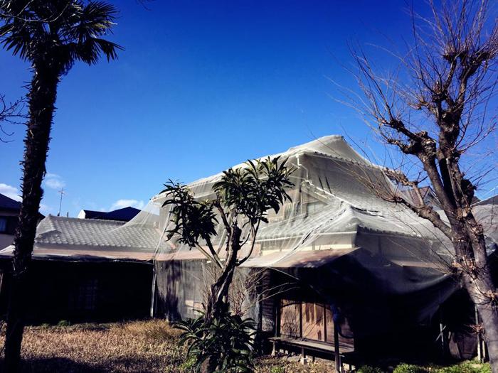 杉並区善福寺 / iPhone 6_c0334533_20401761.jpg
