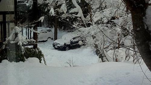 全員で滑って転んで泣いて笑った雪遊び 3日目_c0120834_08575072.jpg