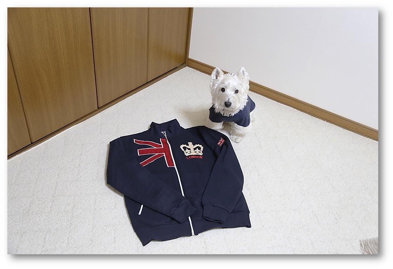 ☆ イギリス ロンドン ジップジャケット ☆_a0161111_23390221.jpg