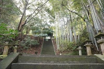 北岡自然公園_b0228113_12461261.jpg