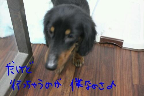 b0130018_14114378.jpg
