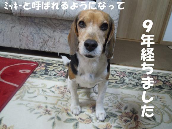c0166622_2213319.jpg
