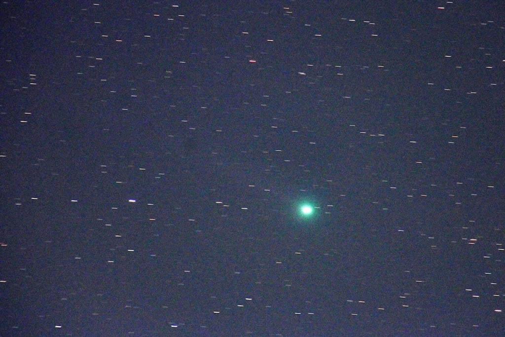 メジロ/シメ/シロハラ/ラブジョイ彗星/月・木星/金星&彗星/太陽面_b0024798_8355911.jpg