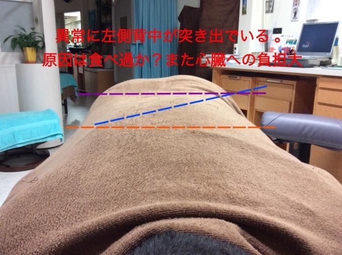c0251001_17203636.jpg