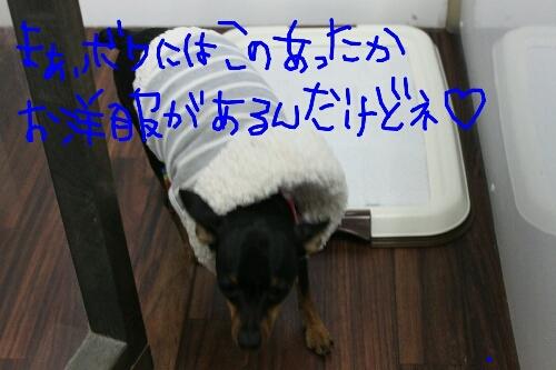 b0130018_9313432.jpg
