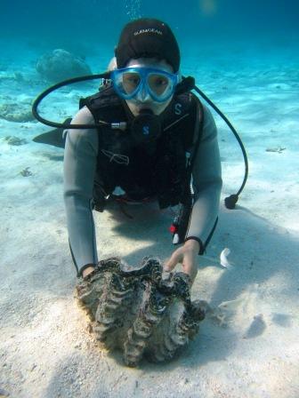 キレイな海で体験ダイビング☆_a0189838_2363683.jpg