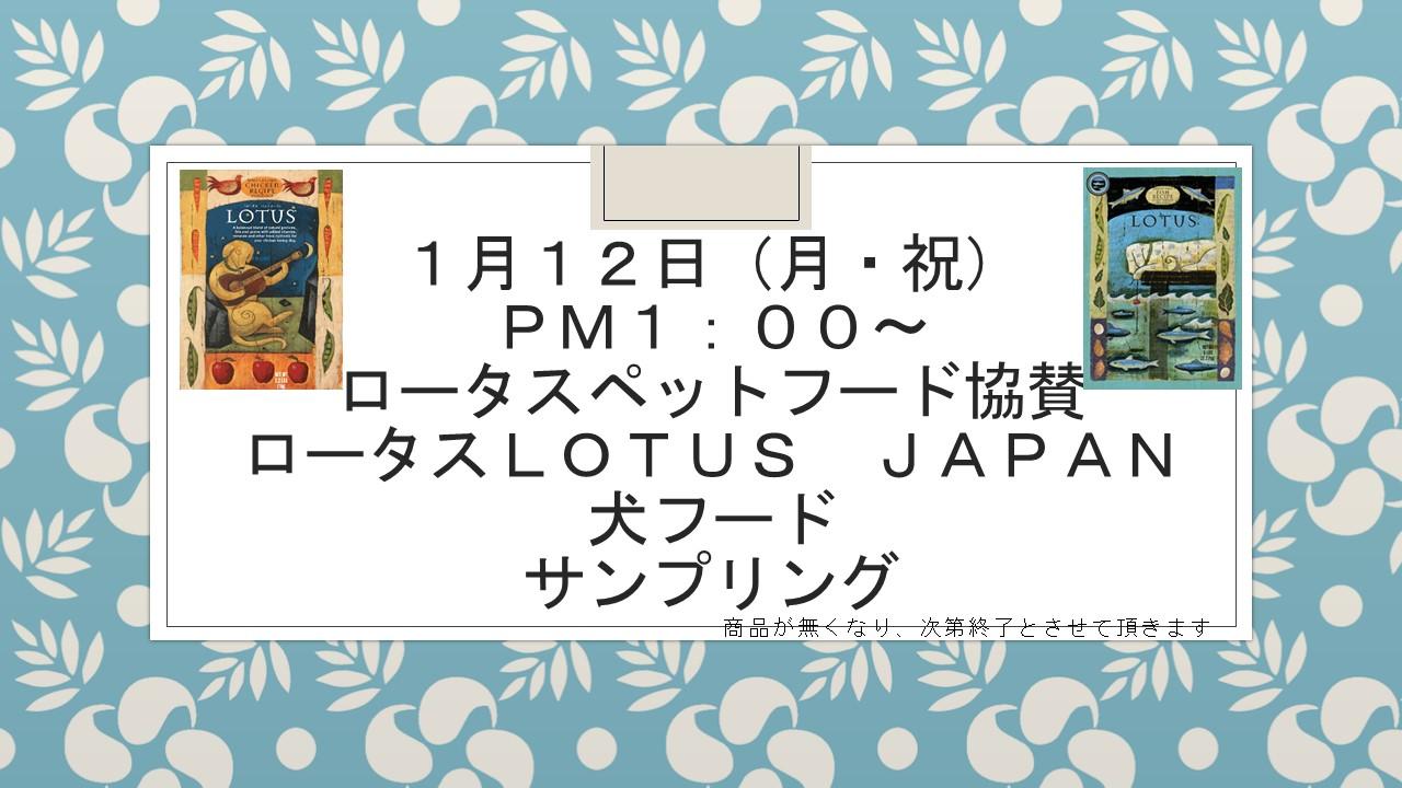 150110 1月12日(月・祝)イベント告知_e0181866_10223276.jpg