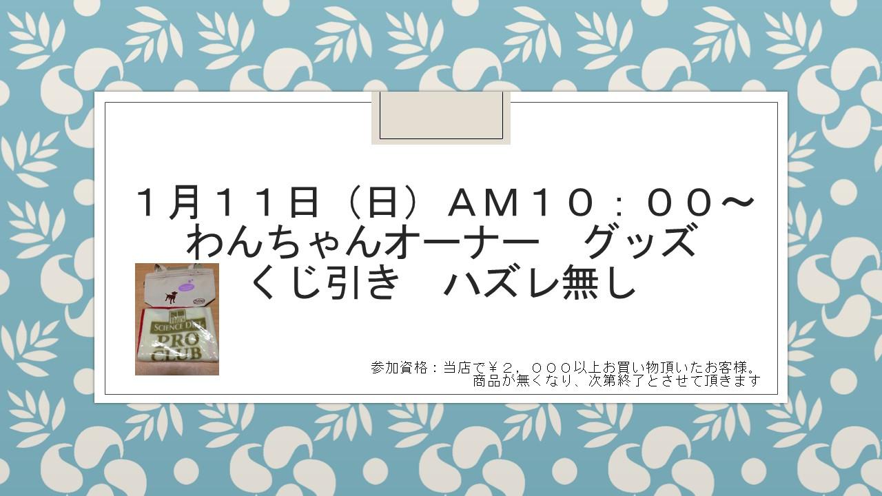 150110 イベント告知_e0181866_9582294.jpg