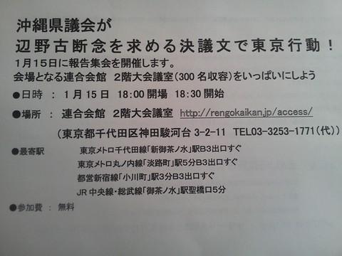 沖縄県議会代表が東京行動!_b0050651_8454273.jpg