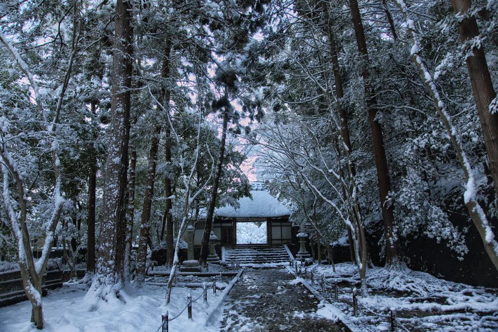 雪景色 京都  <法然院>_f0021869_21112891.jpg