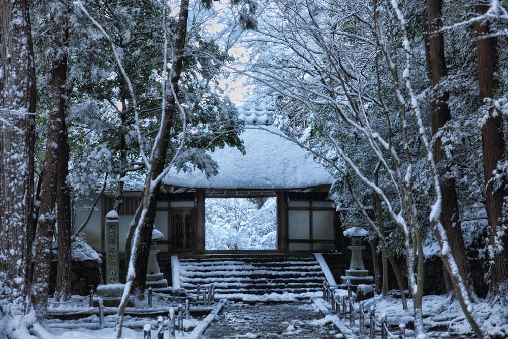 雪景色 京都  <法然院>_f0021869_21144051.jpg