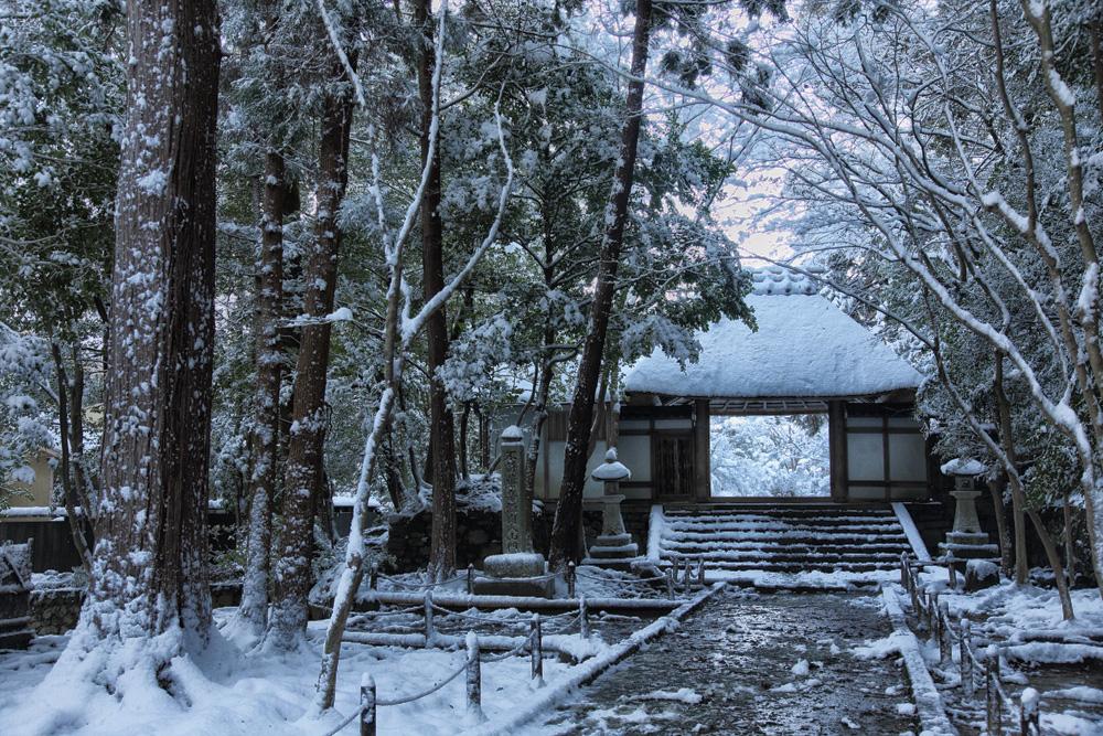 雪景色 京都  <法然院>_f0021869_2121525.jpg