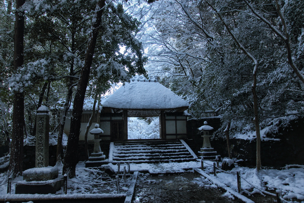 雪景色 京都  <法然院>_f0021869_2173698.jpg