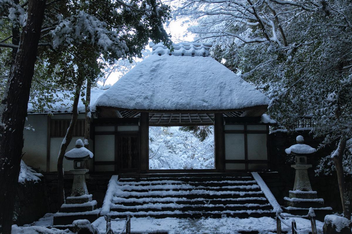 雪景色 京都  <法然院>_f0021869_2192164.jpg