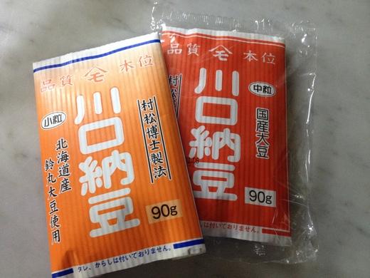 海外で納豆を簡単に作る_a0136671_219164.jpg