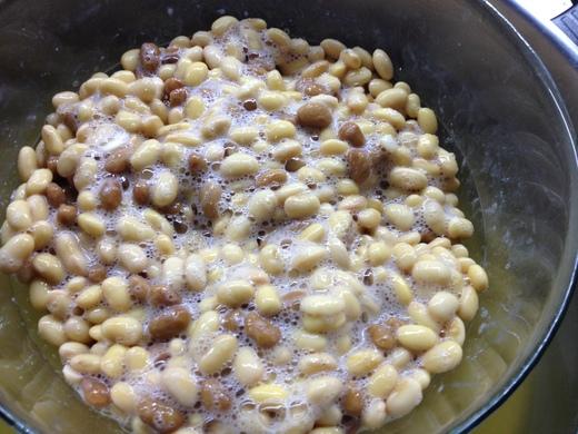 海外で納豆を簡単に作る_a0136671_2242512.jpg