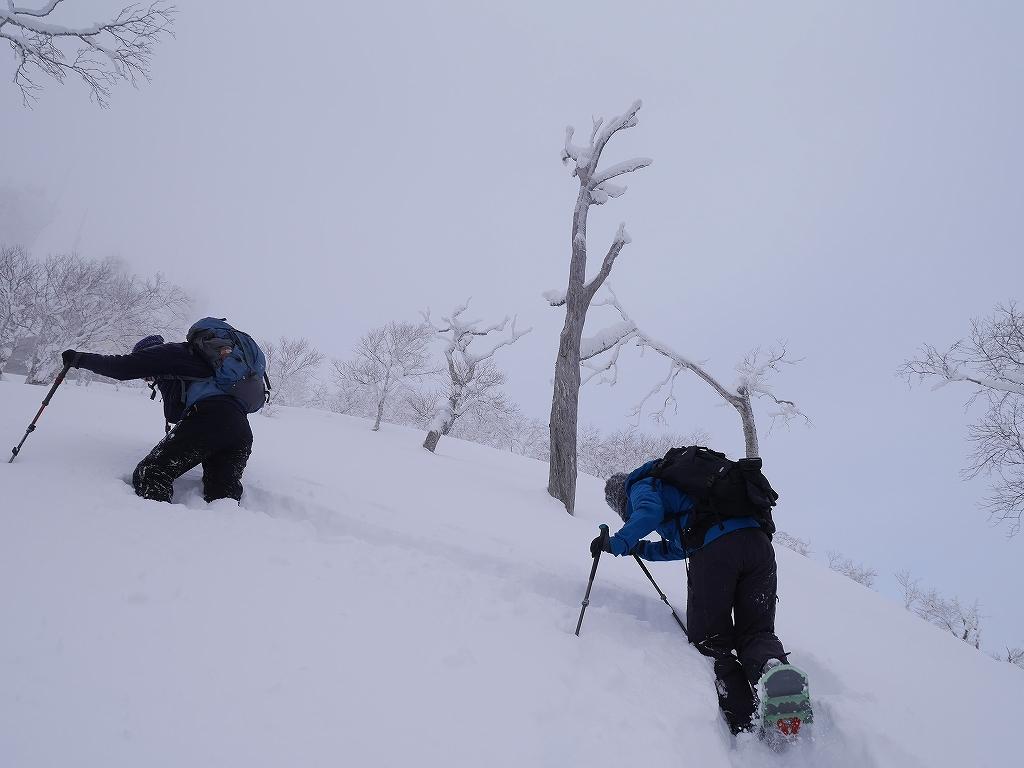 紋別岳と748mP、1月11日-速報版-_f0138096_1535830.jpg