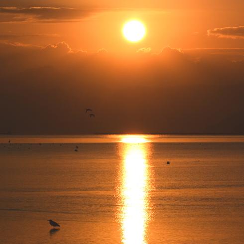休日の朝早く日の出と...。_f0099102_15102410.jpg