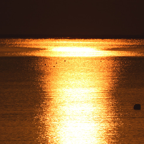 休日の朝早く日の出と...。_f0099102_15113564.jpg