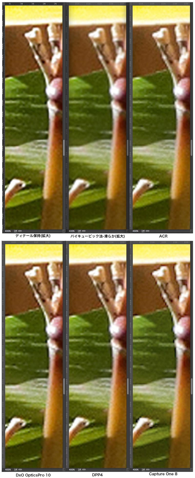 f0274403_1135493.jpg