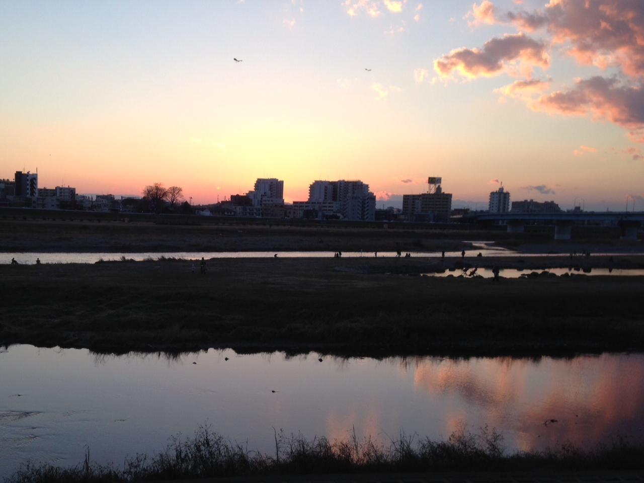 1月11日 多摩川_a0317236_7253474.jpg