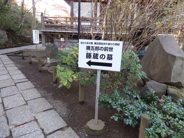 東京ぶらぶら 高幡不動尊_f0337554_13533994.jpg