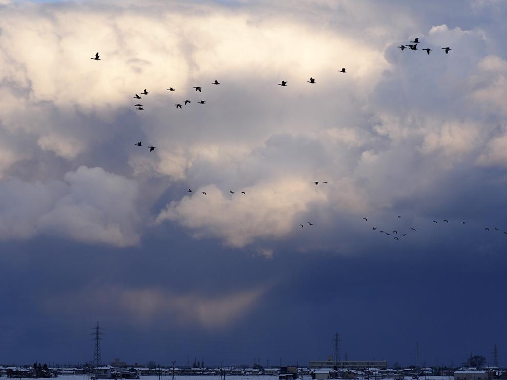 雪雲を飛ぶ_e0214470_19563361.jpg