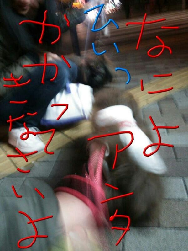 d0177473_1635846.jpg