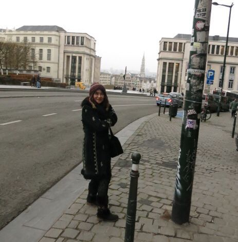 ブリュッセル市街、王宮など_e0233674_11543075.jpg