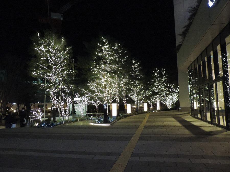 夜の東京スカイツリー_c0187781_06145624.jpg