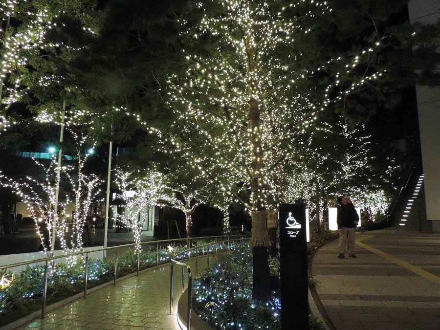 夜の東京スカイツリー_c0187781_06164696.jpg