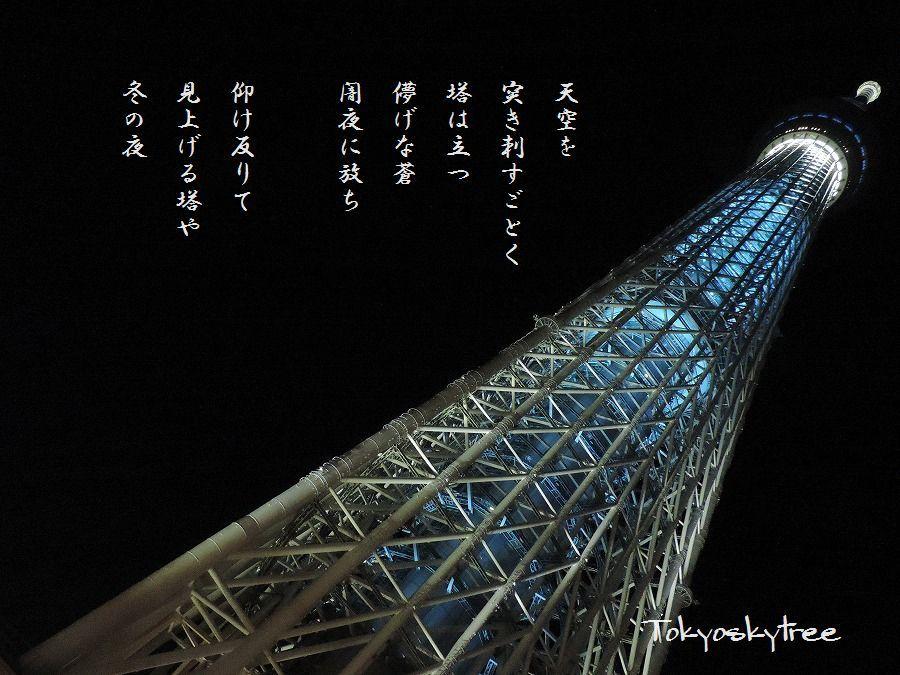 夜の東京スカイツリー_c0187781_09144699.jpg