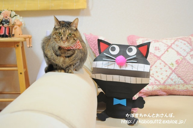 猫だぞ!_a0126590_23093837.jpg