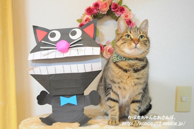 猫だぞ!_a0126590_23115436.jpg