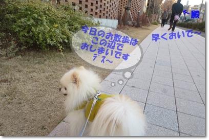 b0167519_053425.jpg