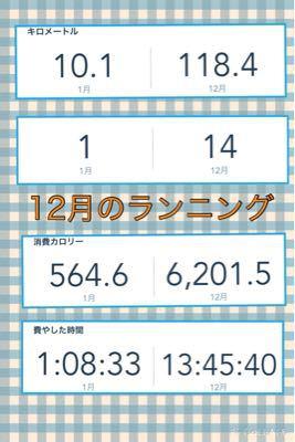 2014年12月ランニング &年間記録_b0203925_916552.jpg