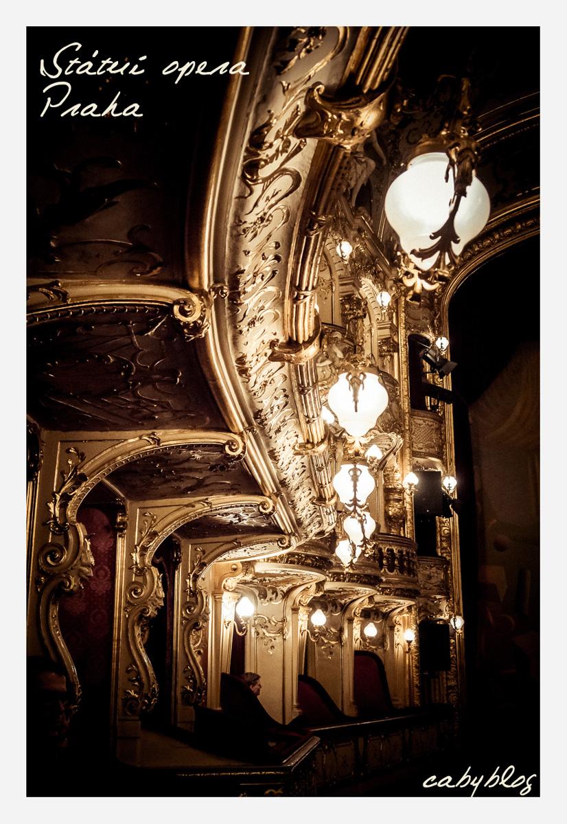 プラハ国立歌劇場にてオペラを観る_b0127032_1182490.jpg