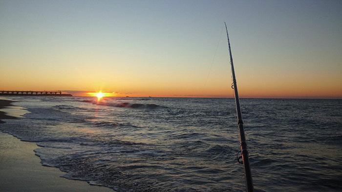 海の散歩は貸切り_c0120834_09145417.jpg
